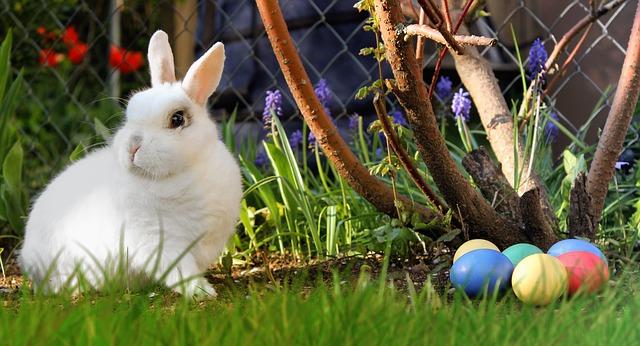 Conejo de Pascua de Resurrección