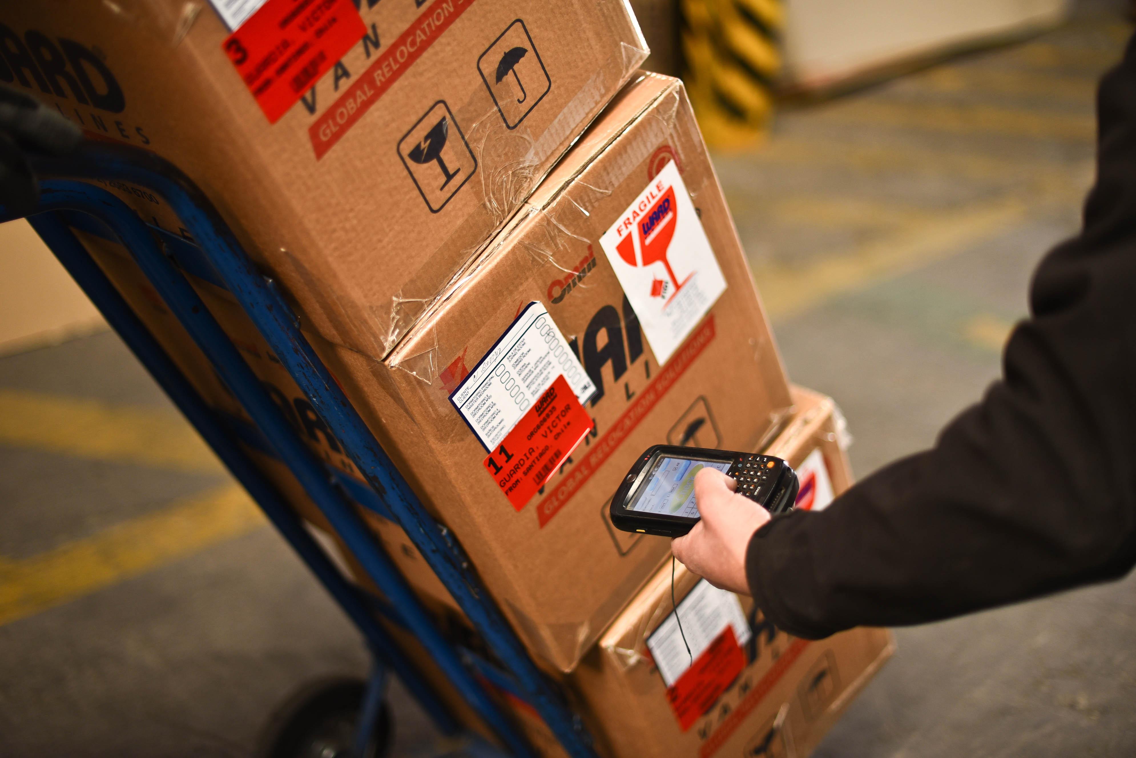 Cajas rotuladas con etiquetas para almacenamiento prolongado